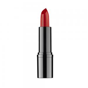 Profssional Lipstick
